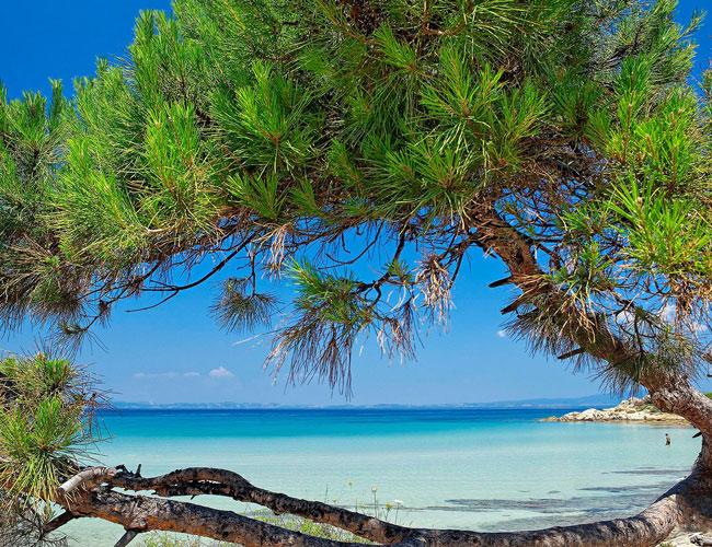 ''Le petit paradis, Halkidiki''
