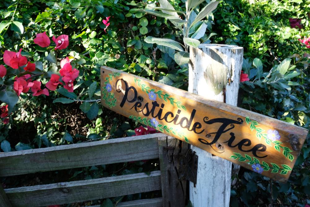 Евростат сообщает: Кипр сократил количество закупаемых пестицидов