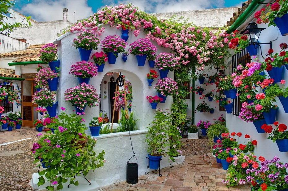 В Афинах стартовало цветочное шоу