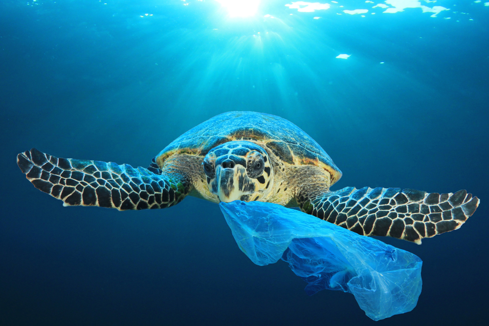 Η Ελλάδα δεν θα χρησημοποιεί πλαστικό από το 2021