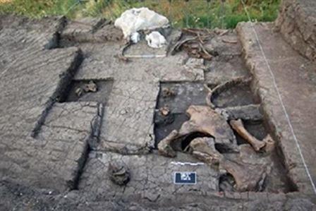 Важливі знахідки епохи нижнього палеоліту в Мегалуполі