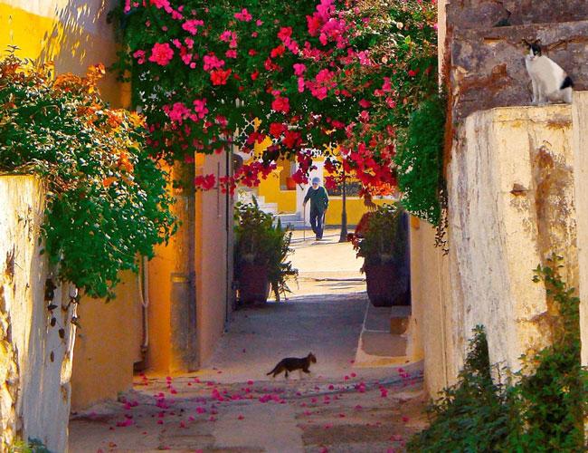 Знакомство с самыми красивыми деревушками Крита.