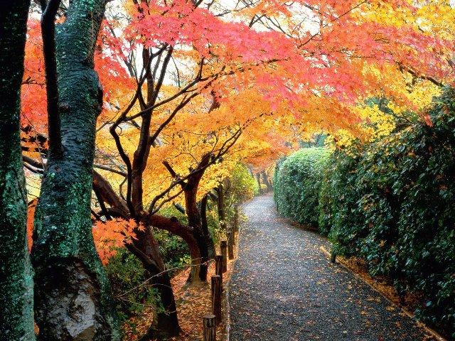 Popular Destination for Autumn- Greece!!!