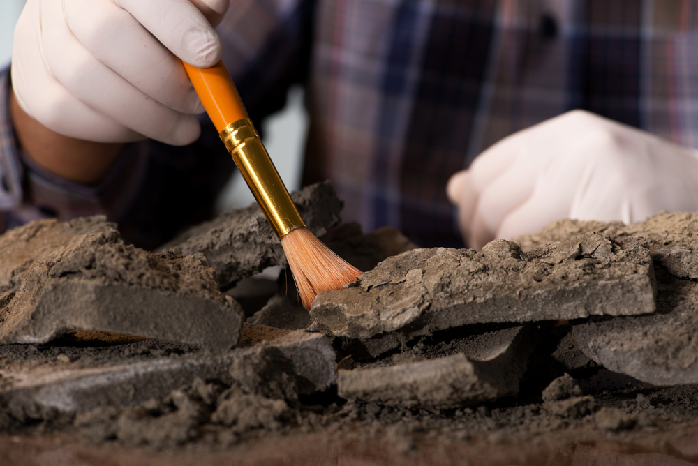 Early Bronze Age settlement has been found in Greece