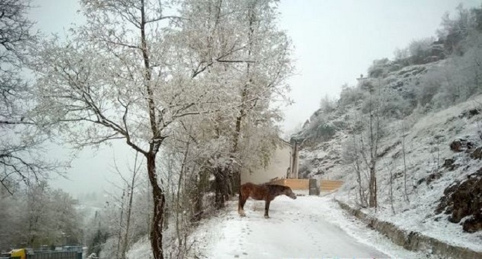 Greece Sees Its First Snowfall of the Season