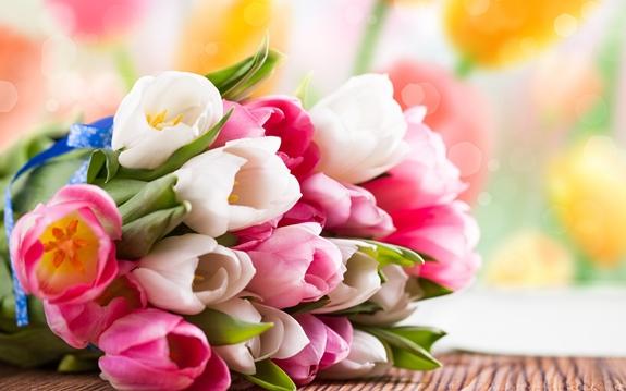 З Міжнародним жіночим днем! З 8 березня!