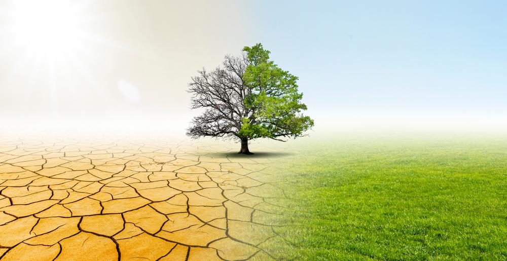 Греция успешно ведет борьбу с климатическими изменениями
